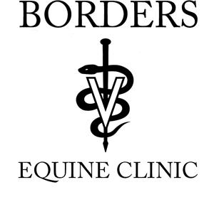 Danny Borders, DVM Mobile Equine Service